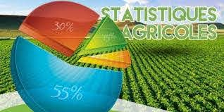 Les statistiques agricoles