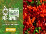 Pré sommet des systèmes alimentaires à Romee