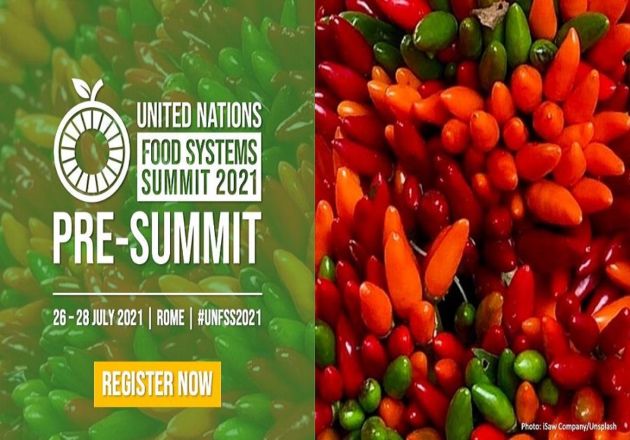 Sommet des Nations Unies sur les systèmes alimentaires 26-28/07/2021
