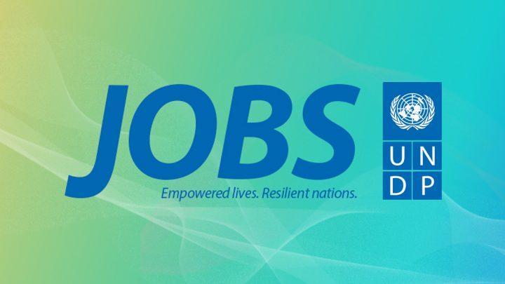 UNDP Jobs, Environment and Energy – Programme Associate