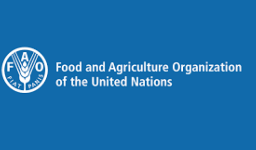 FAO recrute un Agronome